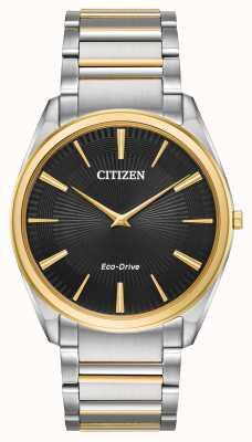 Citizen |男士|细高跟鞋双色手链| AR3074-54E