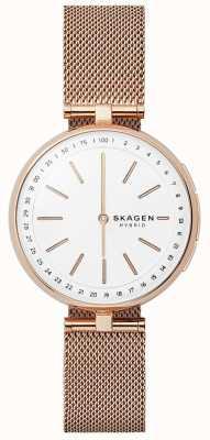 Skagen Signatur连接智能手表玫瑰金网白色表盘 SKT1404