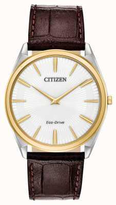 Citizen 细高跟鞋男士环保驱动器|棕色皮革表带|白色表盘 AR3074-03A